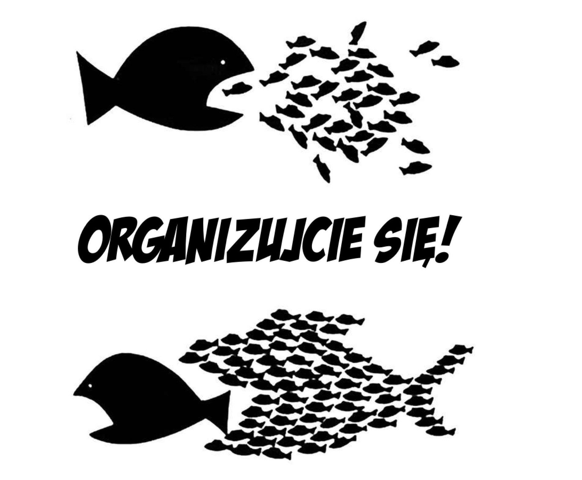 organizujcie-sie