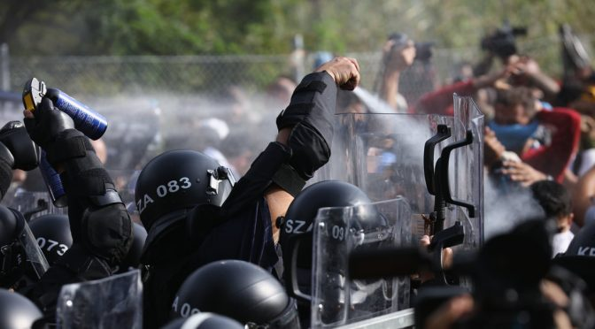 Węgry // Röszke 11: Proces polityczny nigdy nie będzie procesem sprawiedliwym